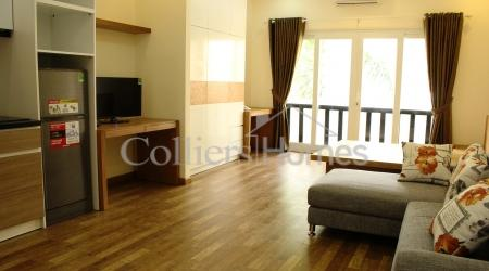 Serviced Apartment in District 2